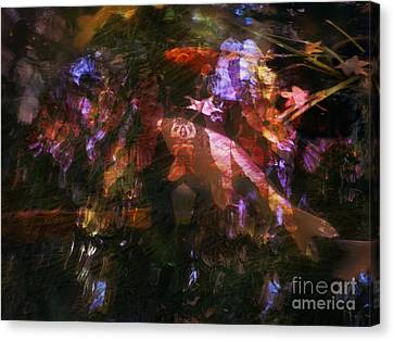 Reflections Canvas Print by Robert Ball
