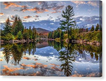 Reflect Canvas Print by Mark Papke