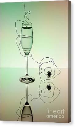 Reflection Canvas Print by Nailia Schwarz