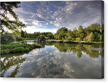 Reflection On The Poudre River Canvas Print by Shane Linke