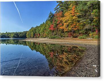 Reflections At Walden Pond Canvas Print by Brian MacLean