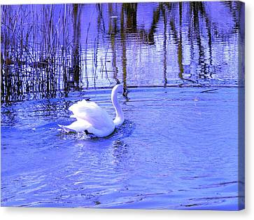 Reflections In Blue Canvas Print by Kendall Eutemey