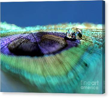 Reflections Of Life Canvas Print by Krissy Katsimbras