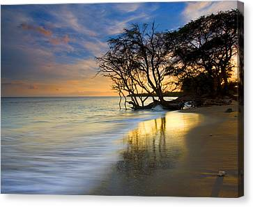 Reflections Of Paradise Canvas Print by Mike  Dawson