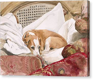 Regal Beagle Canvas Print by Debra Jones