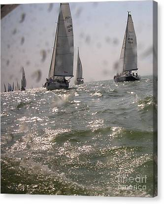 Regatta On The Balaton Lake Canvas Print by Timea Mazug