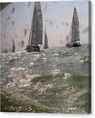 Regatta On The Balaton Lake Canvas Print by Timea Mazug