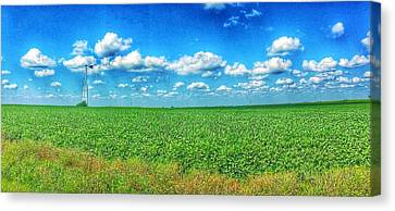 Remains Of The Wind Canvas Print by Jame Hayes
