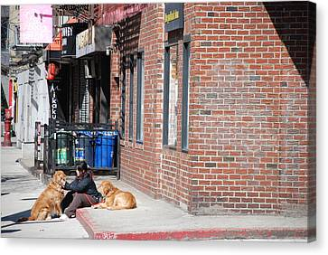 Resting On The Corner Canvas Print by Rob Hans