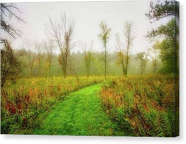 Retzer Nature Center Trail In Utumn Canvas Print by Jennifer Rondinelli Reilly