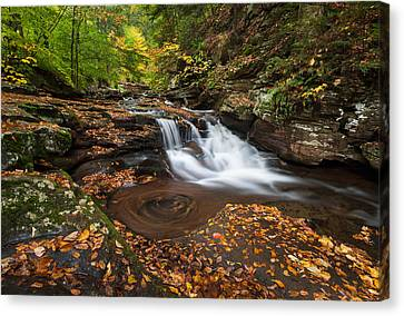 Ricketts Glen State Park Pennsylvania Autumn Waterfall Scenic Canvas Print by Mark VanDyke
