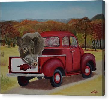 Ridin' With Razorbacks Canvas Print by Belinda Nagy