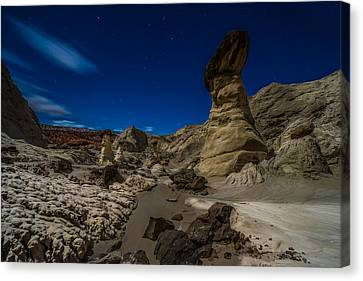 Rim Rock Toadstools Grand Staircase National Monument  Canvas Print by Larry Marshall