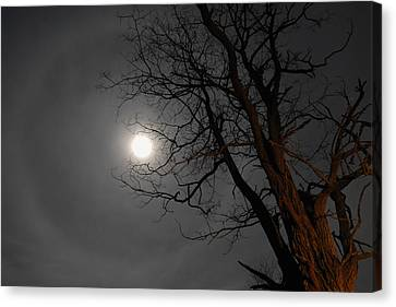 Ring Around Moon Canvas Print by Alan Lenk