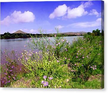 Rio Grande De Las Cruces Canvas Print by Kurt Van Wagner