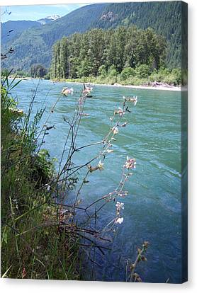 River Canvas Print by Ken Day