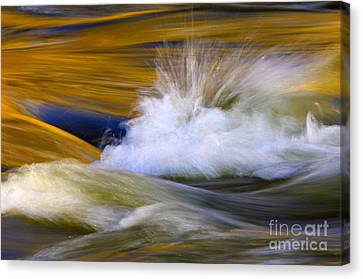 River Canvas Print by Silke Magino