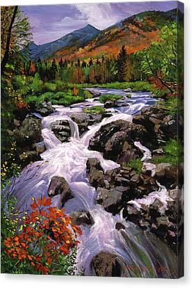 River Sounds Canvas Print by David Lloyd Glover