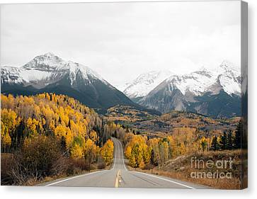 Road Into The Snow Peaks Canvas Print by Bedros Awak
