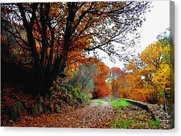 Road Through An Autumn Forest H B Canvas Print by Gert J Rheeders