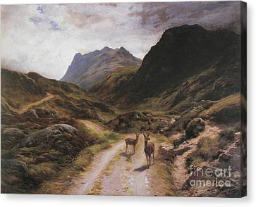 Road To Loch Maree Canvas Print by Celestial Images