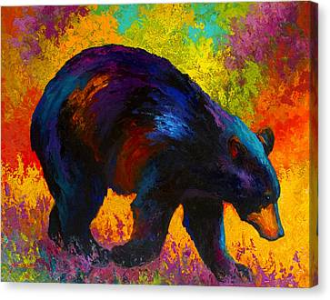 Roaming - Black Bear Canvas Print by Marion Rose