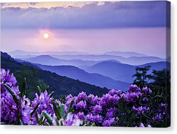 Roan Mountain Sunset Canvas Print by Rob Travis