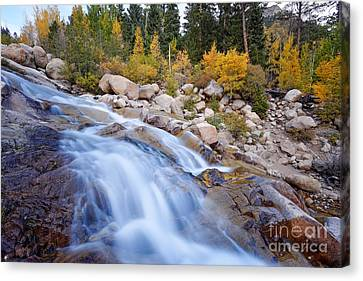 Roaring River Waterfalls At Alluvial Fan - Rocky Mountain National Park - Estes Park Colorado Canvas Print by Silvio Ligutti