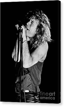 Robert Plant-0040 Canvas Print by Timothy Bischoff