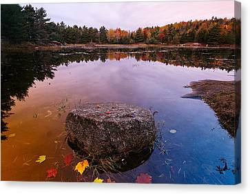 Rock In A Pond Acadia Natioanl Park Maine Canvas Print by George Oze