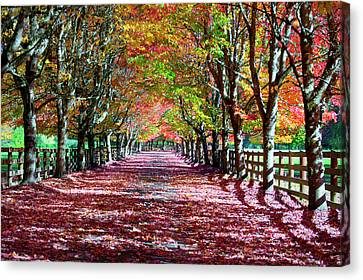 Rockwood Farm Canvas Print by Emerita Wheeling