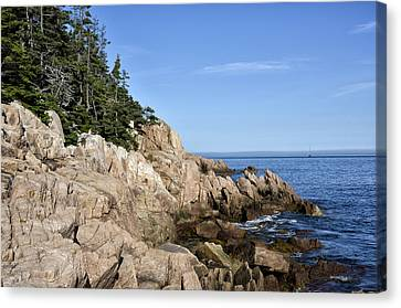 Rocky Maine Coast Canvas Print by Brendan Reals