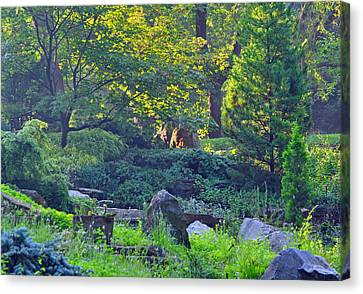 Rocky Morning Canvas Print by Peter  McIntosh
