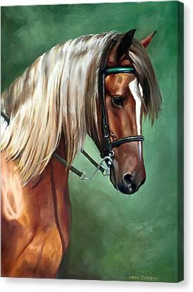 Rocky Mountain Horse Canvas Print by Linda Tenukas