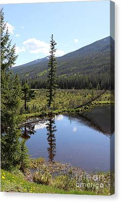 Rocky Mountain Np Beaver Ponds Canvas Print by Christiane Schulze Art And Photography