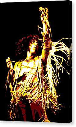 Roger Daltrey Canvas Print by DB Artist