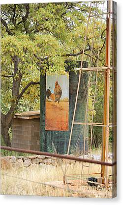 Rooster Water Tank Canvas Print by Donna Greene