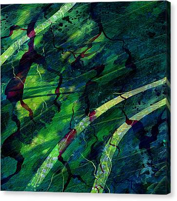 Root Canal Canvas Print by Rachel Christine Nowicki