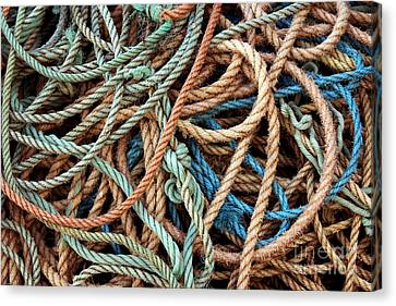 Rope Background Canvas Print by Carlos Caetano