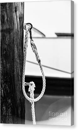 Rope Fence Fragment In Harbour Canvas Print by Elena Elisseeva