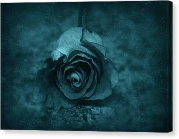 Rose - Green Canvas Print by Angie Tirado