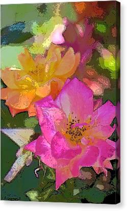Rose 114 Canvas Print by Pamela Cooper