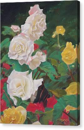 Rose Garden Canvas Print by Christopher Reid