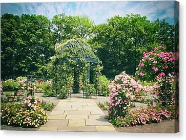 Rose Garden Walkway Canvas Print by Jessica Jenney