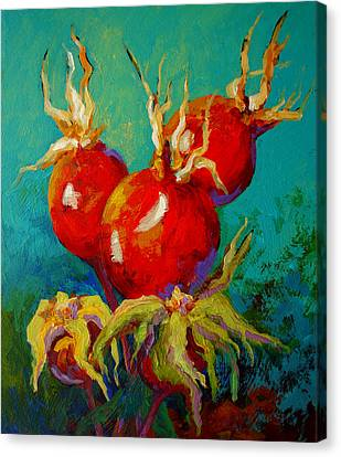 Rose Hips Canvas Print by Marion Rose
