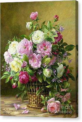 Roses  Canvas Print by Albert Williams