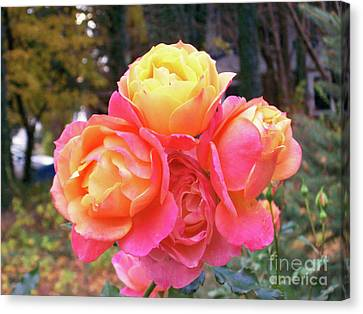 Four Roses On One Stem Canvas Print by Mary Ann Weger