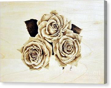 Roses Canvas Print by Ilaria Andreucci