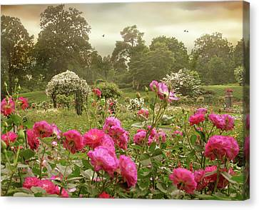 Roses In The Mist Canvas Print by Jessica Jenney