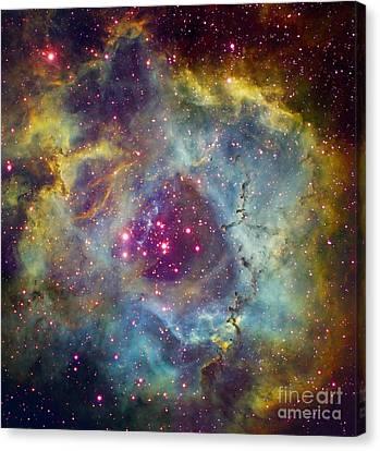 Rosette Nebula Ngc 2244 In Monoceros Canvas Print by Filipe Alves